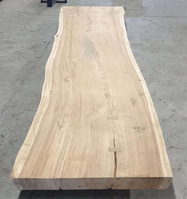 Live edge table suar 25501