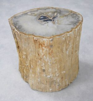 Beistelltisch versteinertes Holz 34008