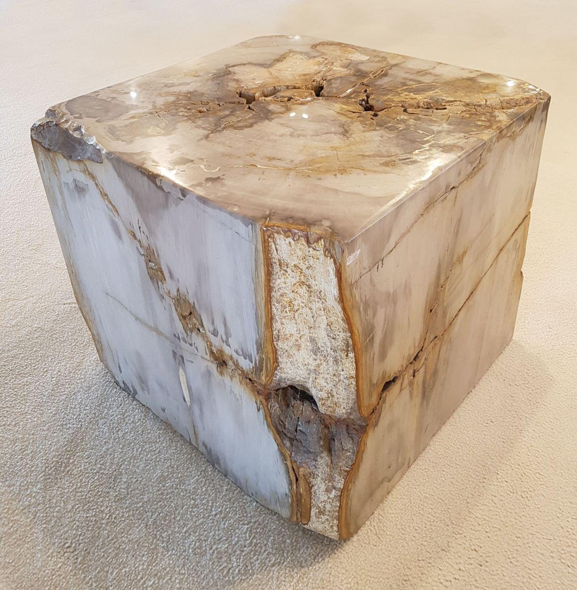 Bijzettafel versteend hout 26435