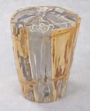 Bijzettafel versteend hout 34002