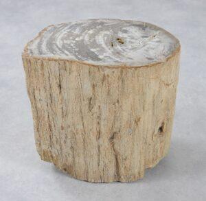 Bijzettafel versteend hout 34004
