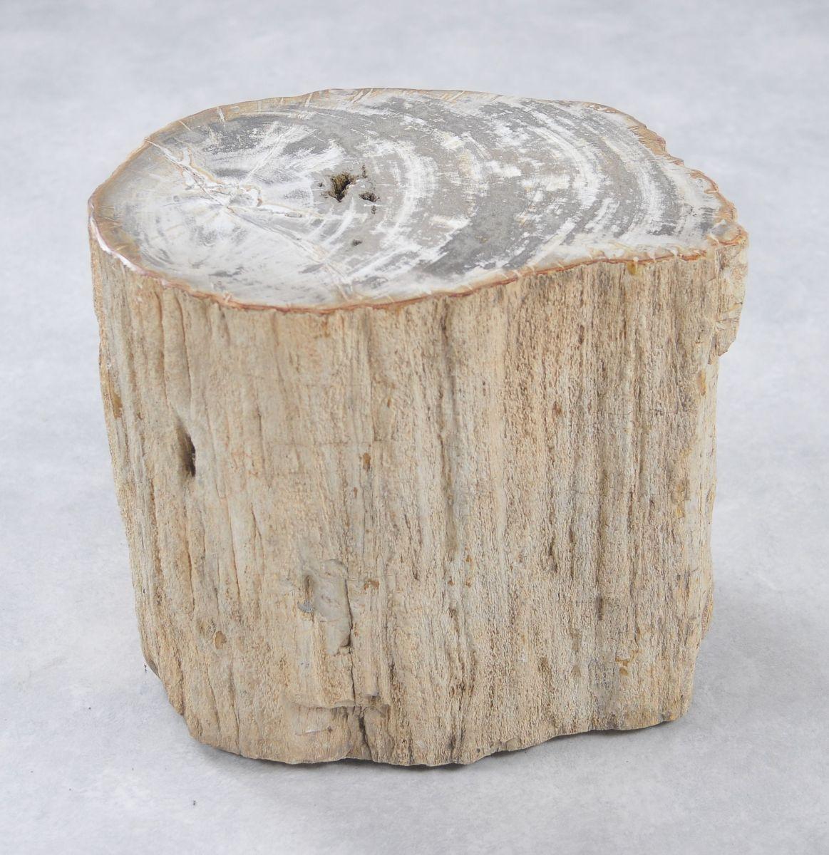 Bijzettafel versteend hout 34005