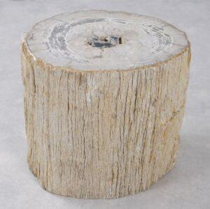 Bijzettafel versteend hout 34007