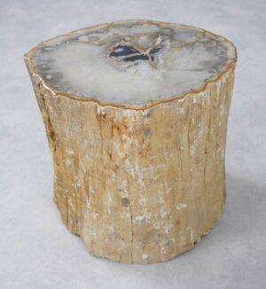 Bijzettafel versteend hout 34008