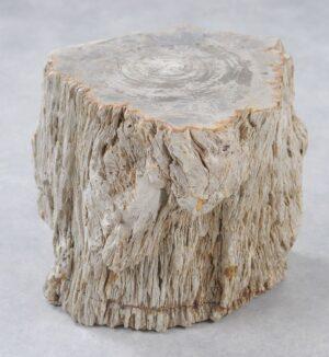 Bijzettafel versteend hout 34012