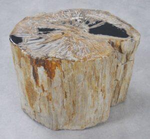Bijzettafel versteend hout 34023