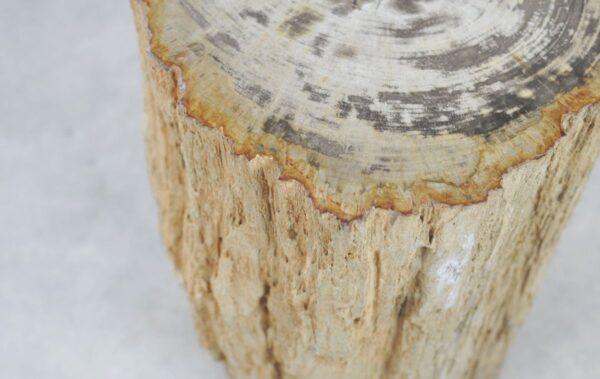 Bijzettafel versteend hout 35001