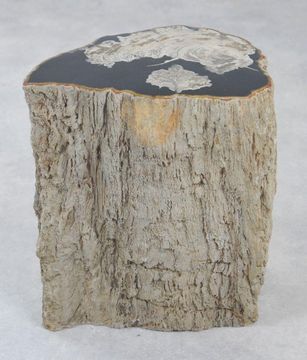 Bijzettafel versteend hout 35002b
