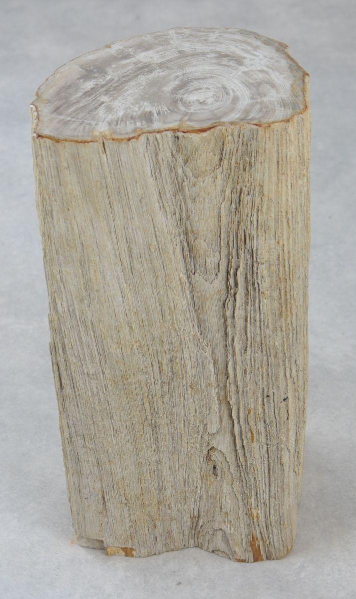 Bijzettafel versteend hout 35004