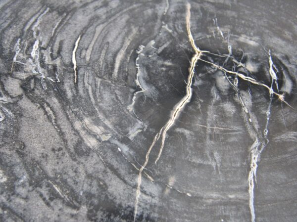 Coffee table petrified wood 35132