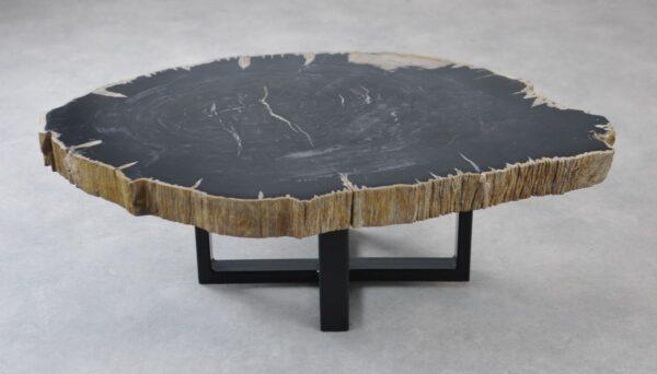 Coffee table petrified wood 35133