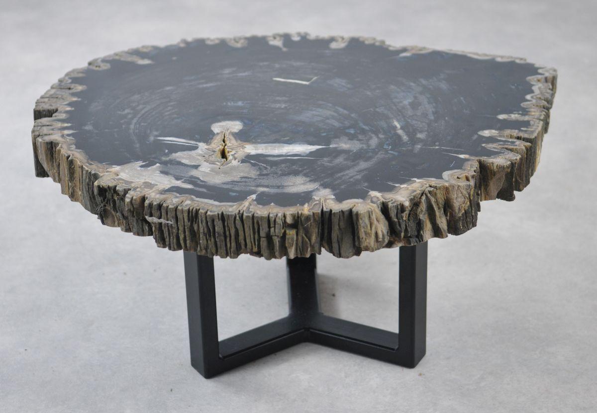 Coffee table petrified wood 35138