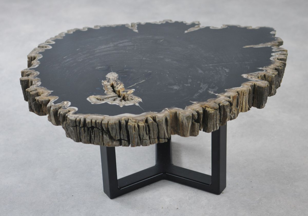 Coffee table petrified wood 35139