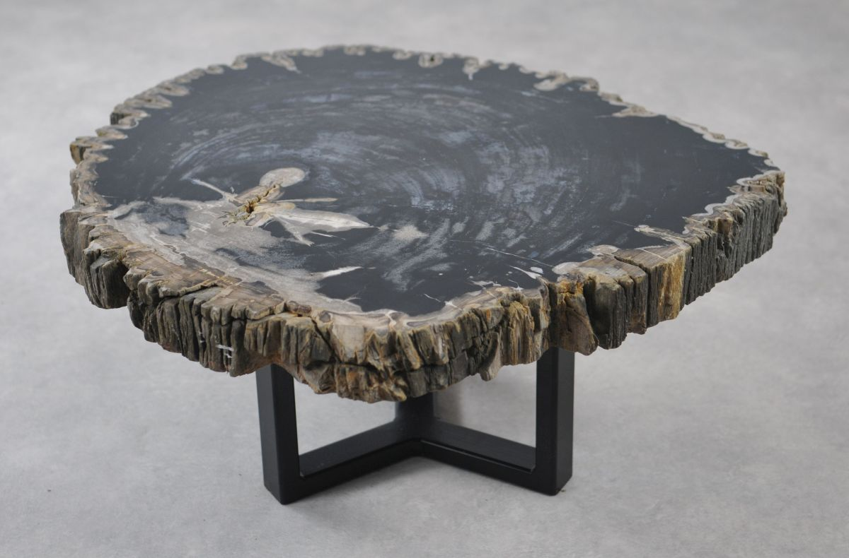 Coffee table petrified wood 35144