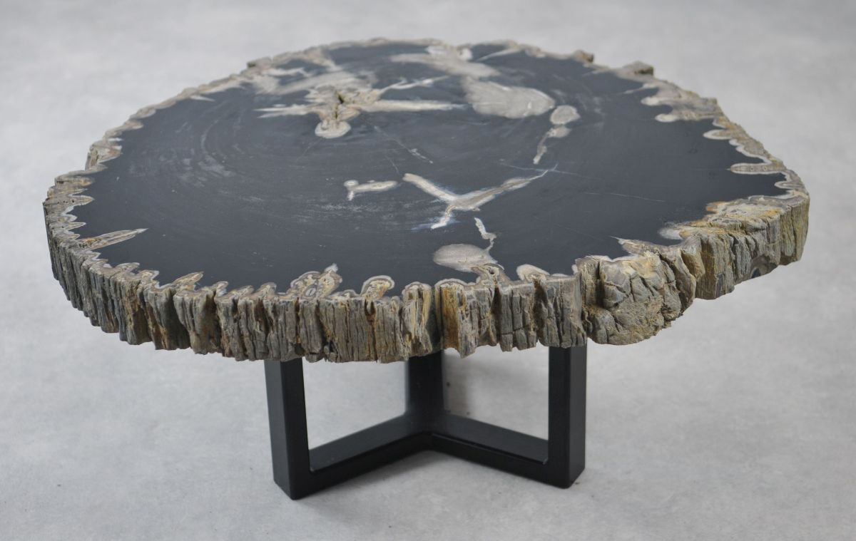 Coffee table petrified wood 35146