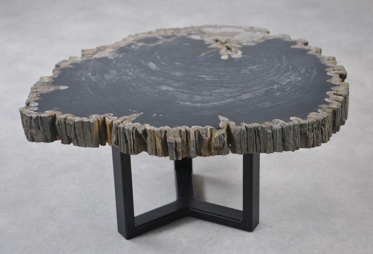 Coffee table petrified wood 35149