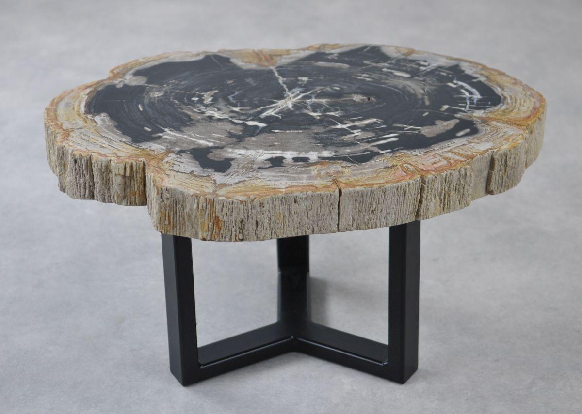 Coffee table petrified wood 35152