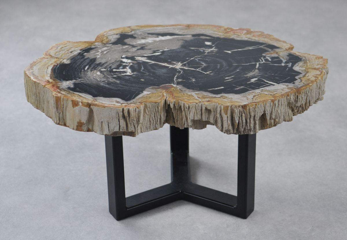 Coffee table petrified wood 35153