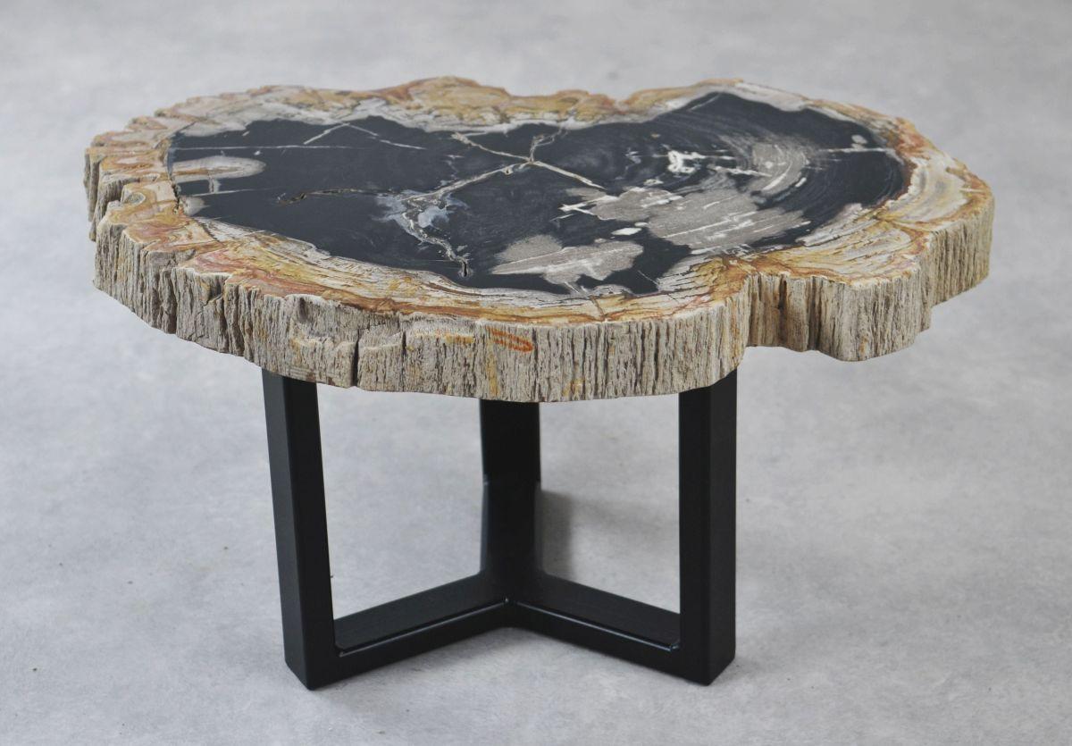 Coffee table petrified wood 35154