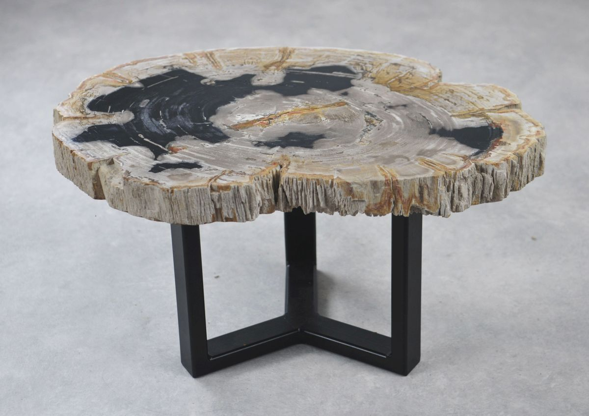Coffee table petrified wood 35155