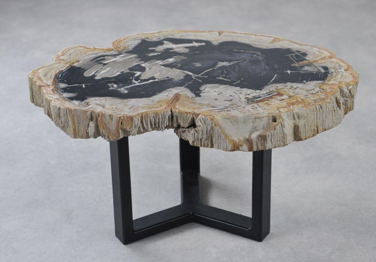 Coffee table petrified wood 35156