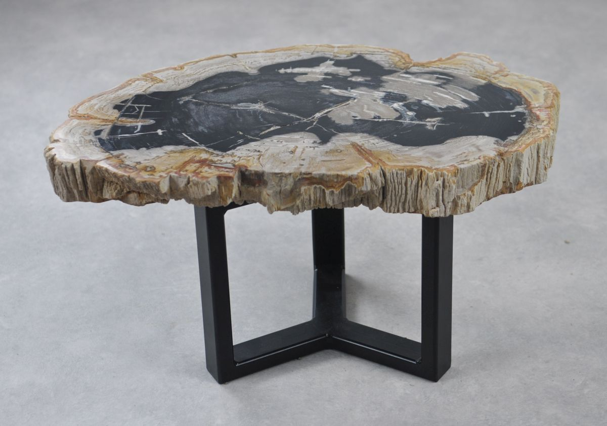Coffee table petrified wood 35157