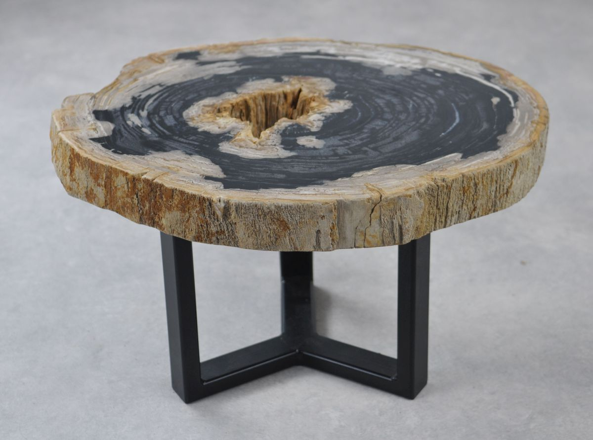Coffee table petrified wood 35159
