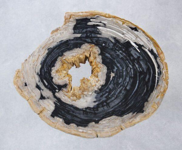 Coffee table petrified wood 35160
