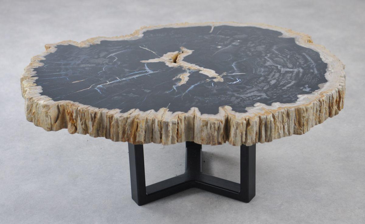 Coffee table petrified wood 35164