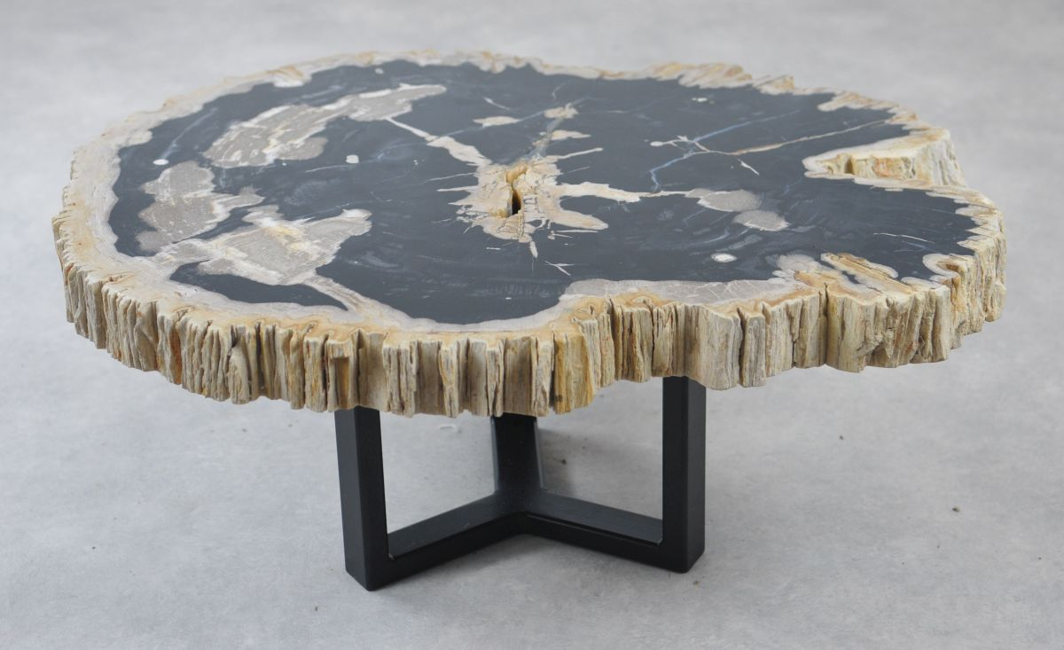 Coffee table petrified wood 35165