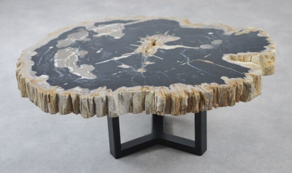 Coffee table petrified wood 35166