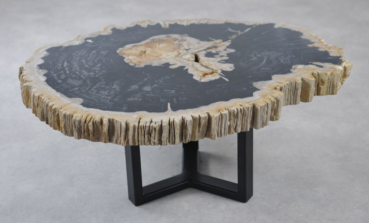 Coffee table petrified wood 35167