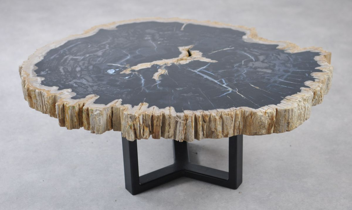 Coffee table petrified wood 35170