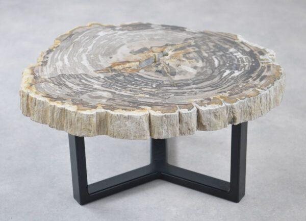 Coffee table petrified wood 35175
