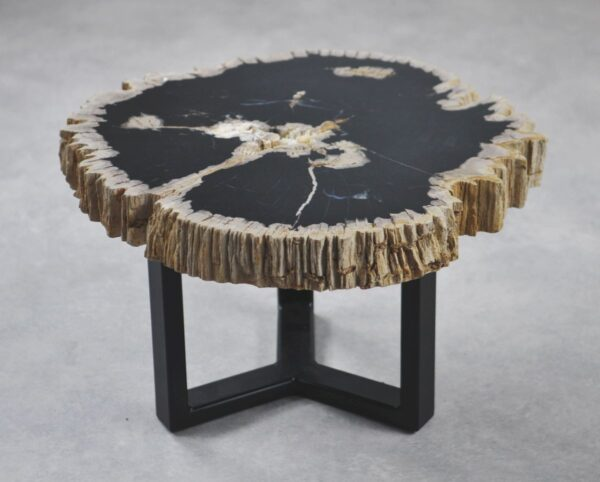 Coffee table petrified wood 35179