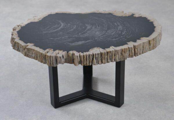 Coffee table petrified wood 35183