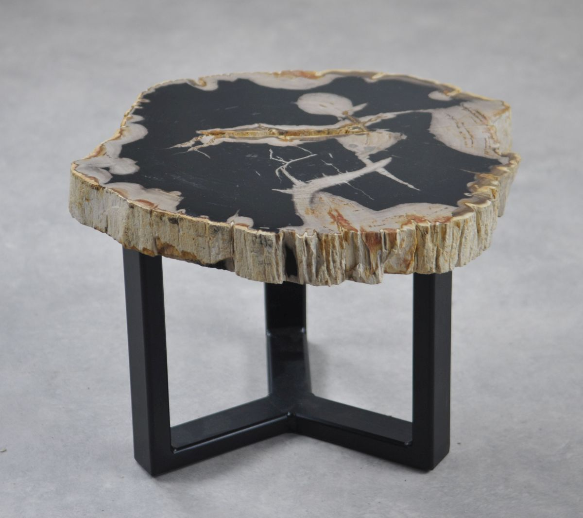 Coffee table petrified wood 35194
