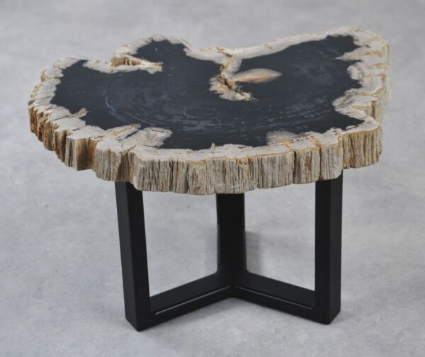 Coffee table petrified wood 35195