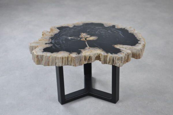 Coffee table petrified wood 35201
