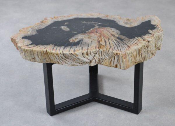 Coffee table petrified wood 35207
