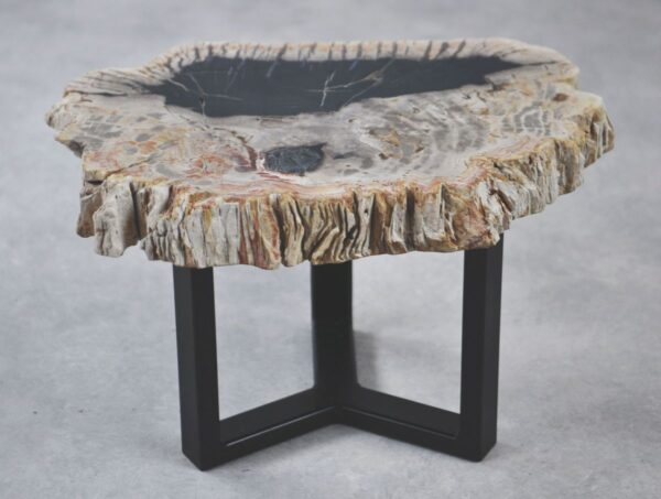 Coffee table petrified wood 35209
