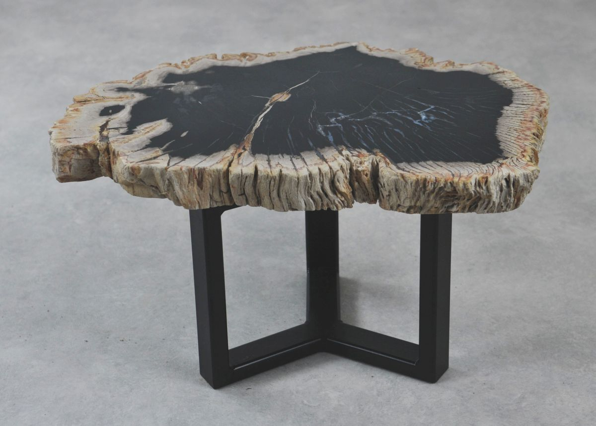 Coffee table petrified wood 35210