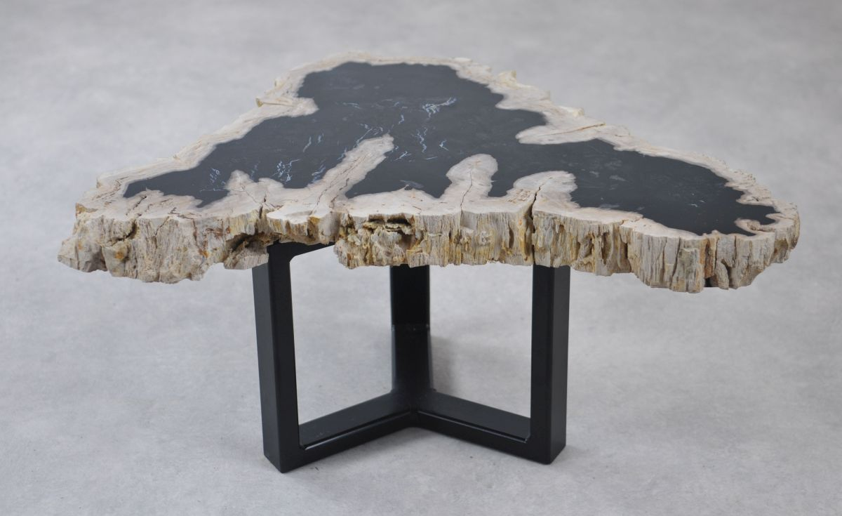 Coffee table petrified wood 35215