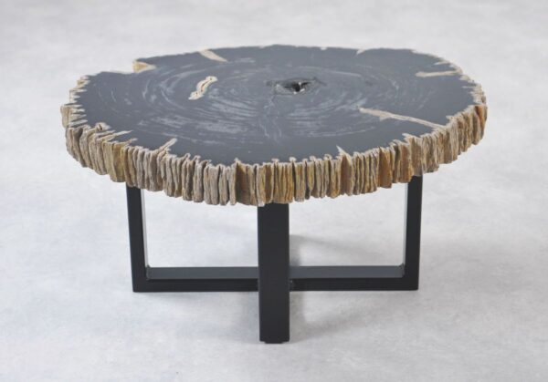 Coffee table petrified wood 35219