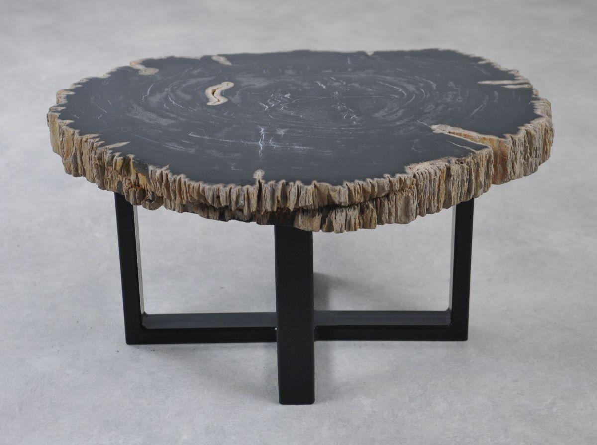 Coffee table petrified wood 35221