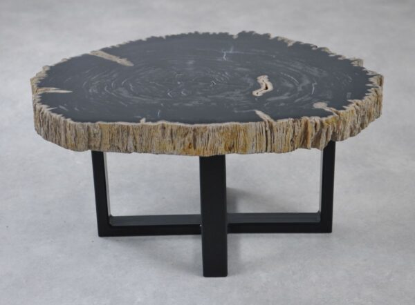 Coffee table petrified wood 35222