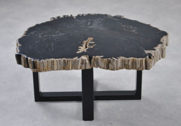 Coffee table petrified wood 35226