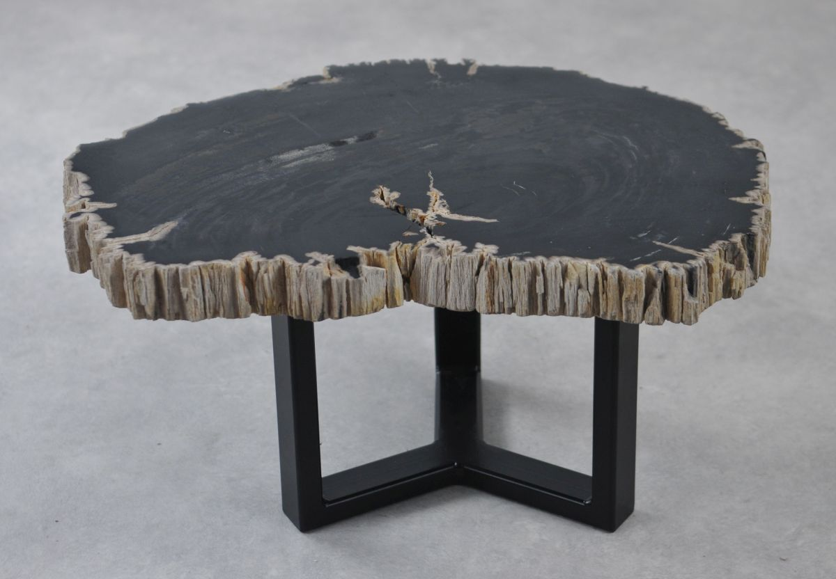 Coffee table petrified wood 35228