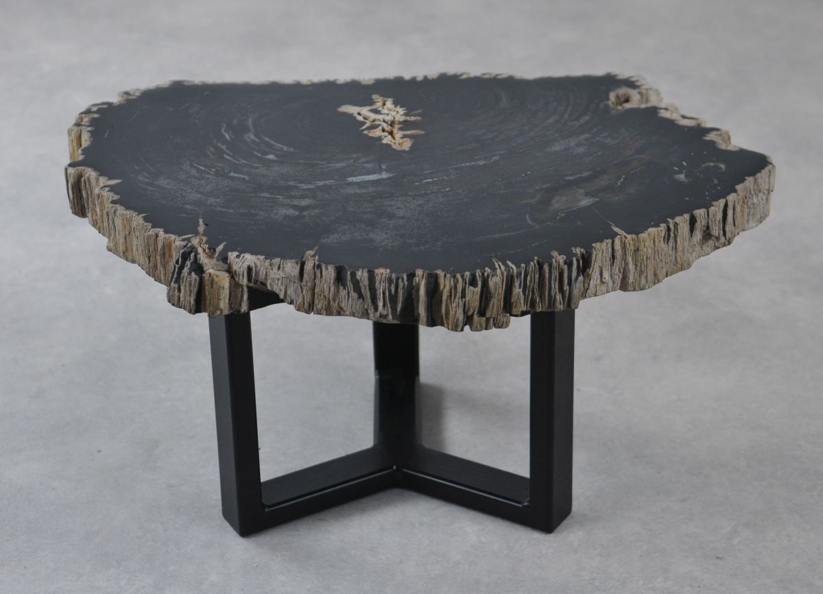 Coffee table petrified wood 35229