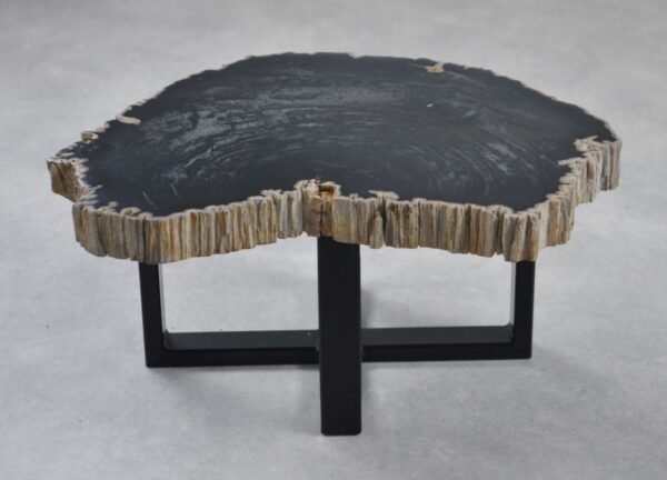 Coffee table petrified wood 35231